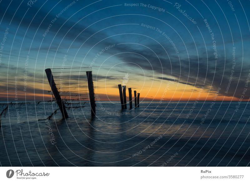 Sonnenuntergang am Sperrzaun von Wustrow. Deich Wellenbrecher Küste Küstenschutz Ostsee Wetter Strand Meer MEER Urlaub Küstenregion Sommerurlaub Küstenwanderung