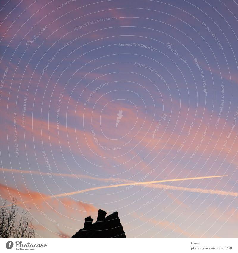 allmählich mal schlafen gehen himmel wolken kondensstreifen haus baum perspektive kippen rosa hellblau stimmung abend dämmerung blaue Stunde Silhouette dach