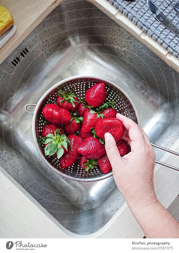 Gewaschene reife saftige rote Erdbeeren im Maschensieb über dem Waschbecken erdbeeren gewaschen Hand Waschen Sauberkeit Wasser nass Küche pov Draufsicht Beeren