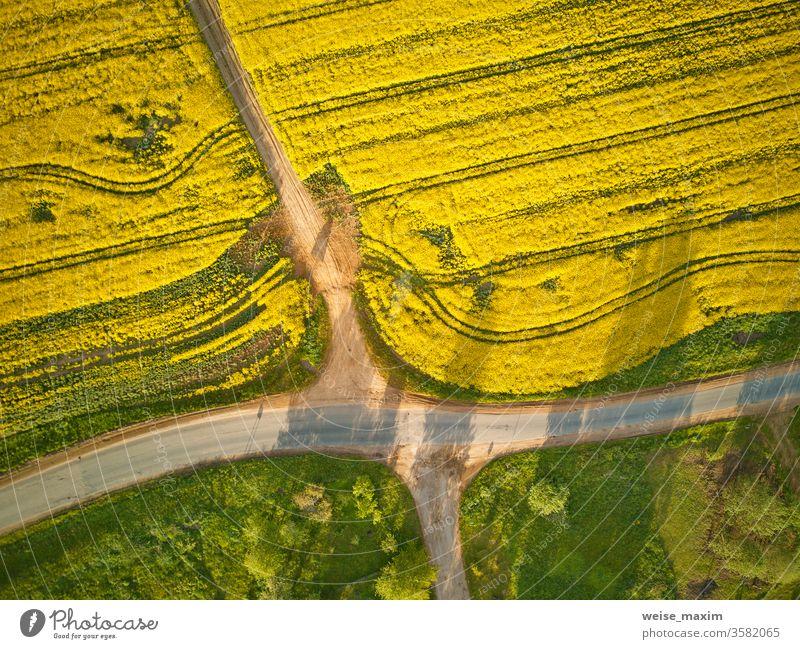Schotterstraße im Rapsblütefeld, Frühling ländlich Luftaufnahme Straße Ackerbau Wiese Sommer Weg Feld Blume grün gelb Blüte Antenne Top Bauernhof Landschaft