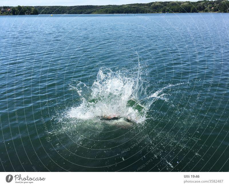 Sprung ins kalte Wasser (Nr.4) Sprungkraft springen See Mut mutig hemmungslos Arschbombe Schwimmen & Baden Ferien & Urlaub & Reisen nass Freude spritzen