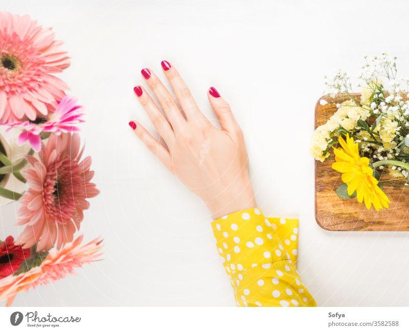 Schöne Frauenhand mit roten Nägeln auf Weiß Schönheit Hand Pflege Haut Maniküre rosa polnisch Wellness gelb Blumen schön Körper Spa weiß Massage Therapie