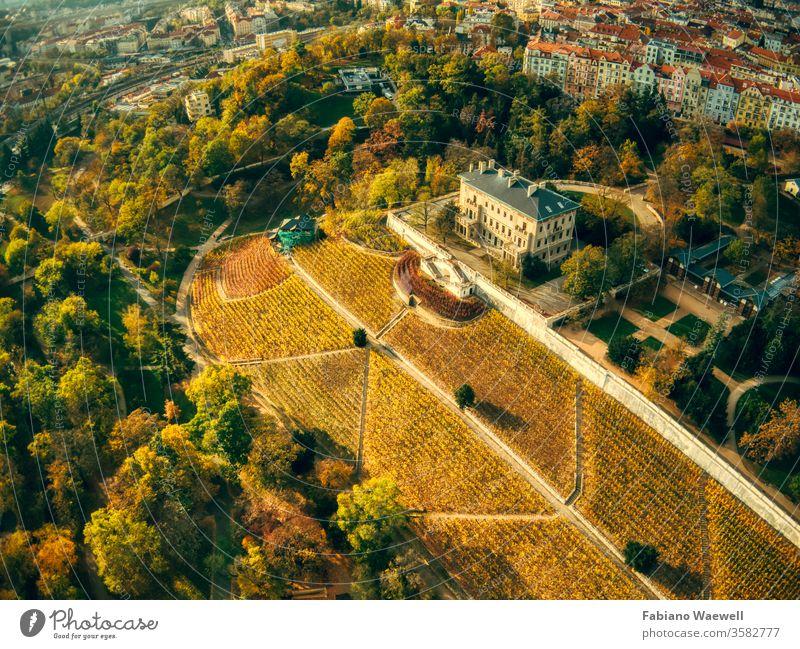 Luftaufnahme des Grebovka-Parks in Prag grün Gebäude Gras historisch europa Himmel modern Natur Windstille ruhig Öffentlich Fernsehturm Straßenbahn friedlich