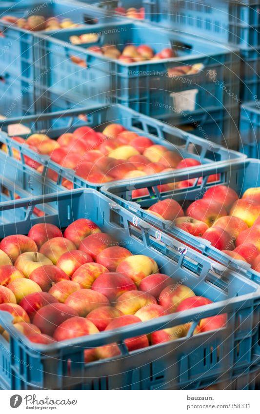 massenhaltung im käfig. blau rot gelb Gesunde Ernährung Essen Gesundheit Linie Metall Lebensmittel Frucht frisch kaufen rund viele Kunststoff