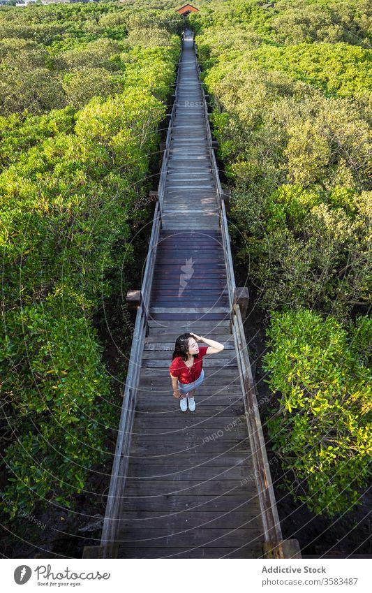 Junger Reisender steht auf Holzbrücke über Wald Tourist Brücke Tourismus malerisch Fernweh Harmonie Waldgebiet Haare berühren Grün Urlaub friedlich Sightseeing