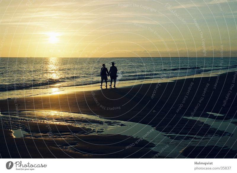 Strandspaziergang Meer ruhig Erholung Küste Insel Romantik Vertrauen Nordsee friedlich Amrum