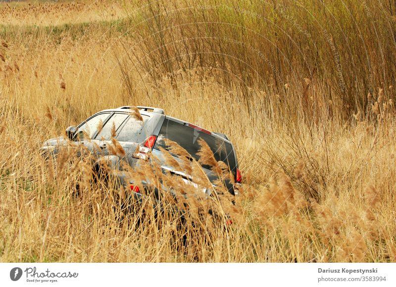 Geländewagen mit Geländewagen über hohes Gras PKW Auto Offroad Fahrzeug Wiese Abenteuer reisen Verkehr Tag Landschaft Natur Ausflug Urlaub suv toyota