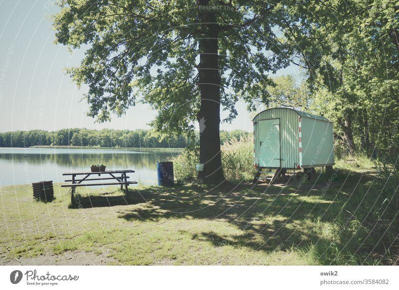 Wohnbereich Seeufer Natur Wasser Außenaufnahme Farbfoto Landschaft blau Menschenleer Pflanze Himmel Baum Sonnenlicht Schatten Kontrast Bank Sitzgelegenheit