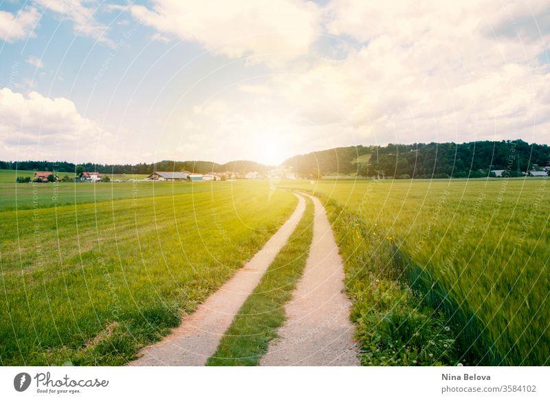 Die Straße führt durch ein Tal, grünes Feld, die Hügel bei Sonnenuntergang Himmel Landschaft Sonnenlicht idyllisch Wolken Ackerbau Wiese ländlich Ansicht