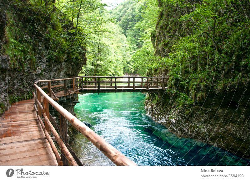 Holzbrücke über Bergfluss, wilde Naturlandschaft. Sauberes Wasser. reisen Vintgar Fluss Landschaft Triglav strömen im Freien grün Wald Slowenien Brücke Europa