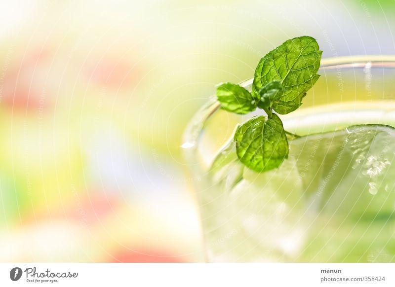 take a drink! Frucht Kräuter & Gewürze Limettenscheibe Zitronenmelisse Ernährung Getränk Erfrischungsgetränk Trinkwasser Limonade Alkohol Sekt Prosecco