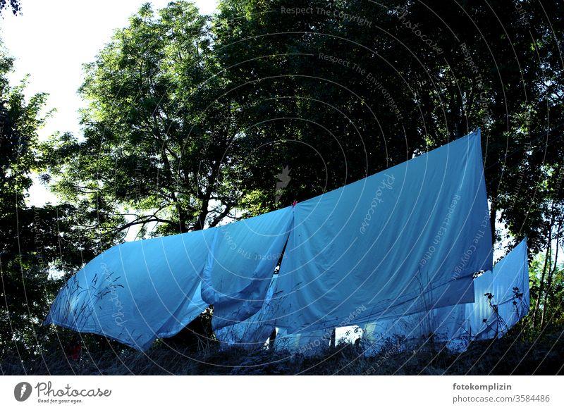 Wäscheleine zwischen Bäumen mit großen Bettlaken spannbettlaken Wäsche waschen Haushaltsführung Bettwäsche Häusliches Leben Sauberkeit Waschtag trocknen