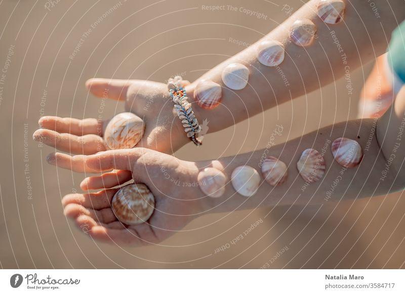 Die Hände kleiner Mädchen mit den Muscheln auf ihnen auf dem Hintergrund des Sandstrandes am Ozean. Kind Hand Liebe Meeresufer Panzer Sommer Sonne im Freien