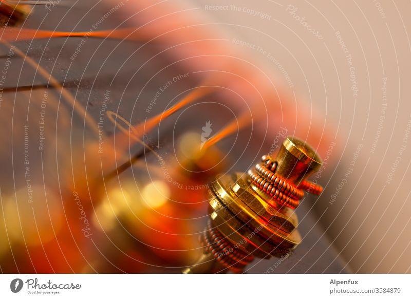 warme Wickel Gitarre Saiten Gitarrensaite Musikinstrument Detailaufnahme Gitarrenhals musizieren Freizeit & Hobby Farbfoto gold akustisch Saiteninstrumente Holz