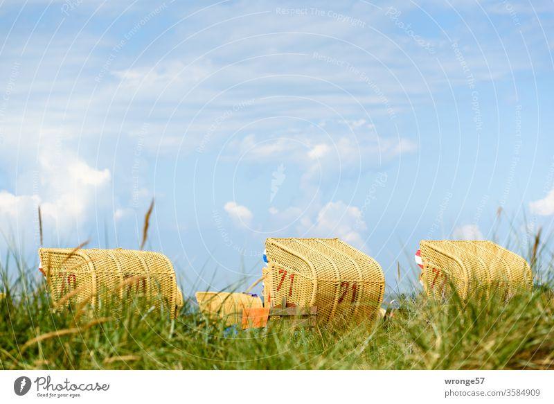 Strandkörbe hinter einer Düne am Ostseestrand bei Sonnenschein und blauem Himmel Stranddüne Ferien & Urlaub & Reisen Küste Sand Meer Sommer Erholung