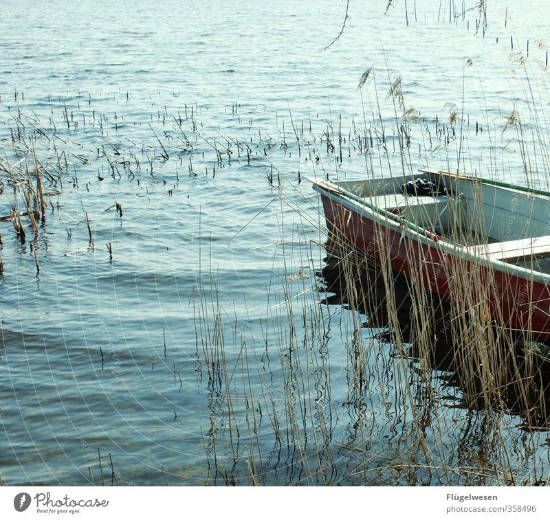 Das Boot Director's cut Ferien & Urlaub & Reisen Tourismus Ausflug Abenteuer Ferne Freiheit Wellen Küste Seeufer Flussufer Strand Bucht Fjord Riff Korallenriff