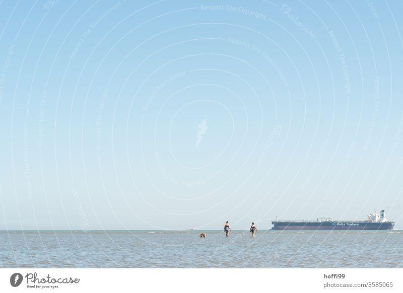 Spaziergang im Watt - das Wasser kommt Wattenmeer Wattwandern Nordsee Ebbe Meer Flut Horizont Küste Strand Natur Gezeiten Himmel Ferne Schlick Schlamm Umwelt