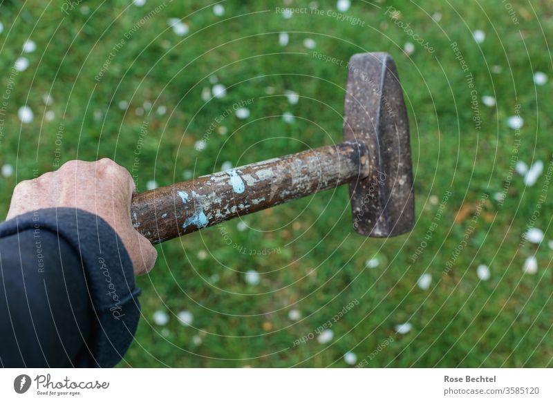 Hand mit Hammer von Hand Objekt der Begierde Textfreiraum oben Nahaufnahme Farbfoto Wiese Tag Textfreiraum unten