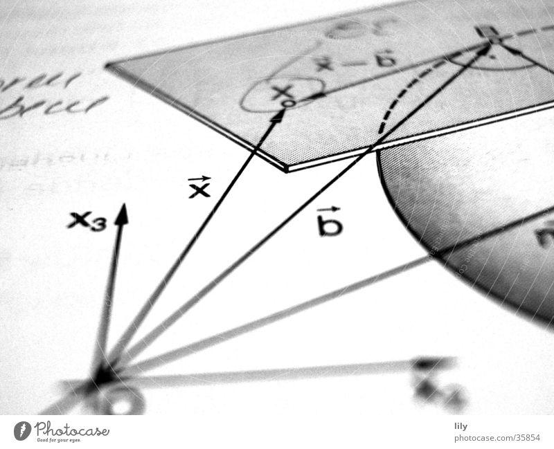loving math #1 Mathematik Schulbücher Wissenschaften Leistungskurs Schule Schwarzweißfoto x Vektoren Faktoren Tangentialebene Kugel Niveau Analytische Geometrie