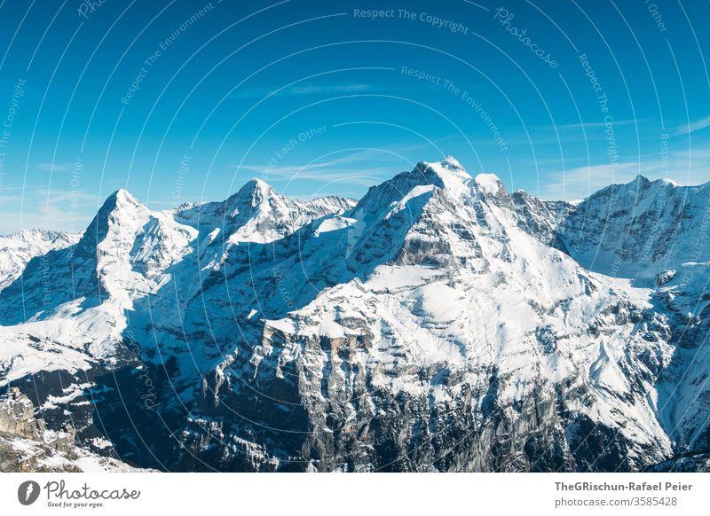 verschneite schweizer Berge Berge u. Gebirge Schnee Schweiz Schilthorn Winter Himmel Alpen Panorama (Aussicht) Eis kalt Außenaufnahme Landschaft Gipfel