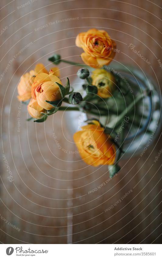 Bouquet von zarten Pfingstrosen in Glasvase Blumenstrauß Haufen hölzern Tisch rustikal Stil Hintergrund frisch filigran natürlich orange Blütezeit Sommer Saison