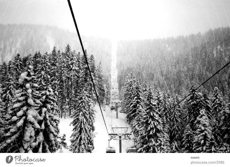 Schneelandschaft Schnee Berge u. Gebirge Tanne Fahrstuhl