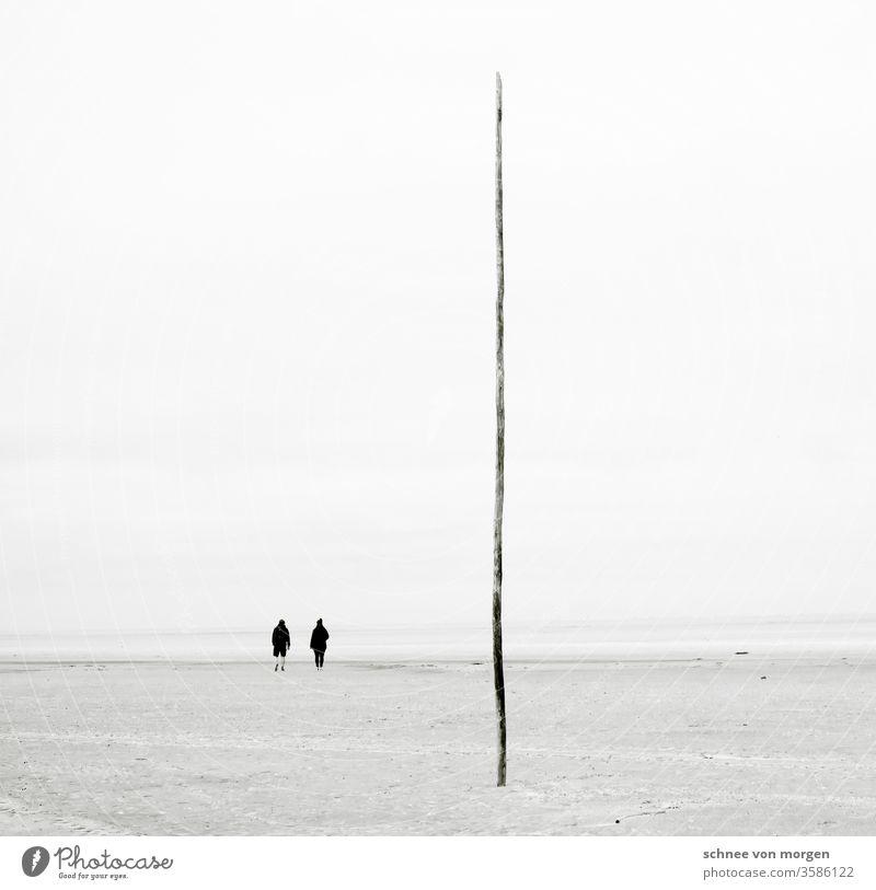Seeblick mit romantisch-tragischer Attitüde mit glücklicher Möwe Meer & Ozean Stand Sand Fluss Watt Flut Ebbe Ruhe weite Horizont Menschenleer Holz weitergehn