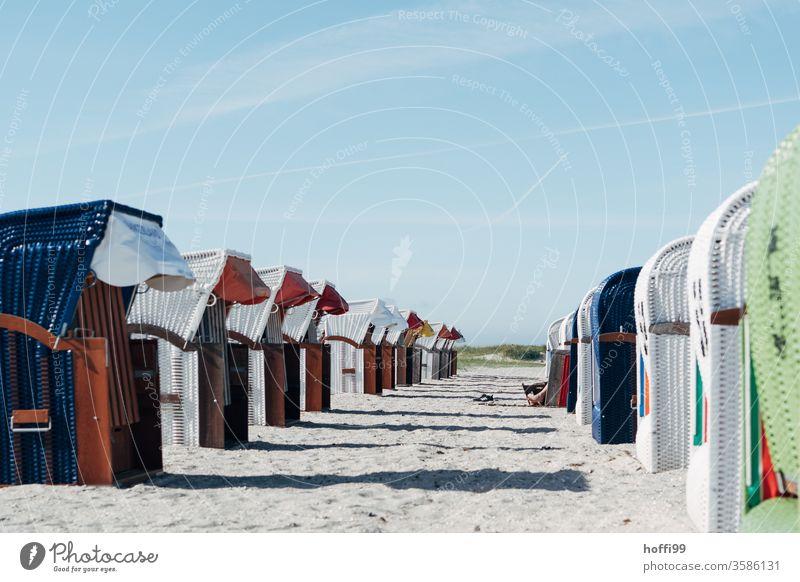 Strandkörbe in Reihe - fast alle leer Strandkorb Strandkorbvermietung Meer Lockdown Leerstand leerstehend Ostsee Erholung Sand Ferien & Urlaub & Reisen Küste