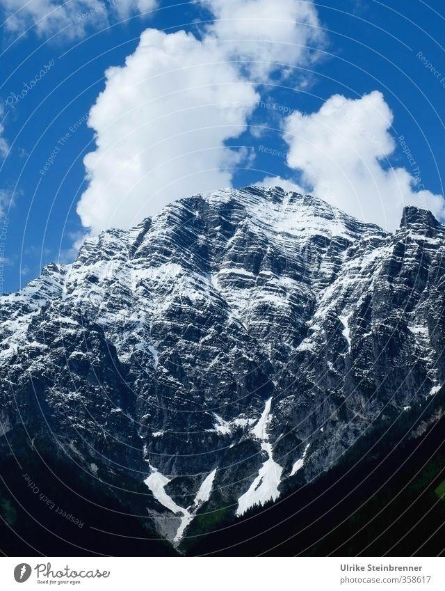 Am Wilden Kaiser 1 Himmel Natur Ferien & Urlaub & Reisen blau Baum Landschaft Wolken Wald Berge u. Gebirge Umwelt Frühling natürlich grau Felsen Tourismus Kraft