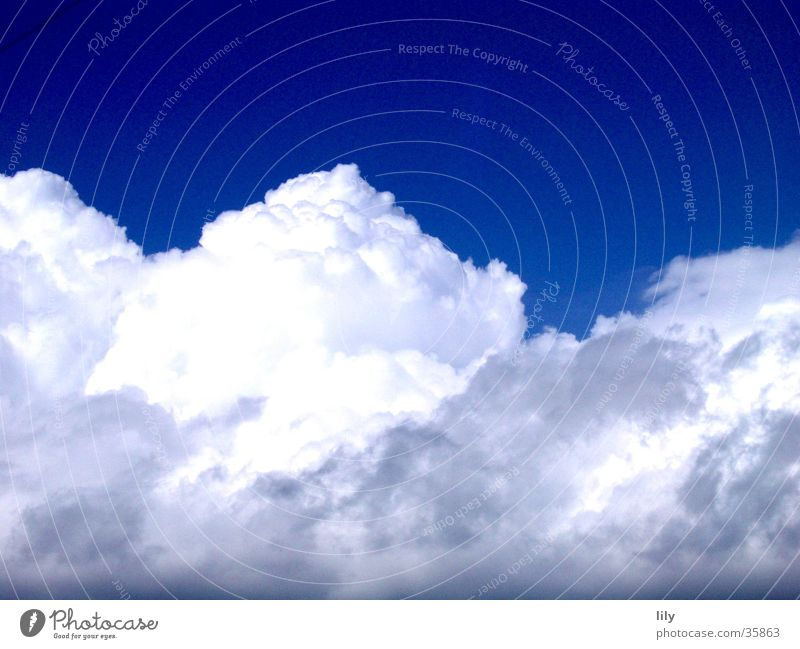 Cloud No.9 Wolken weiß Schweben Zuckerwatte weich Blauer Himmel