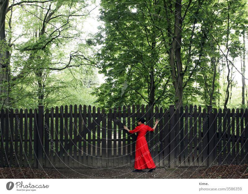 Geschichten vom Zaun (71) frau kleid zaun wald bäume verschlossen tasten gehen stehen dunkel rot grün verzweiflung suche hilfe grenze zu holz unüberwindbar