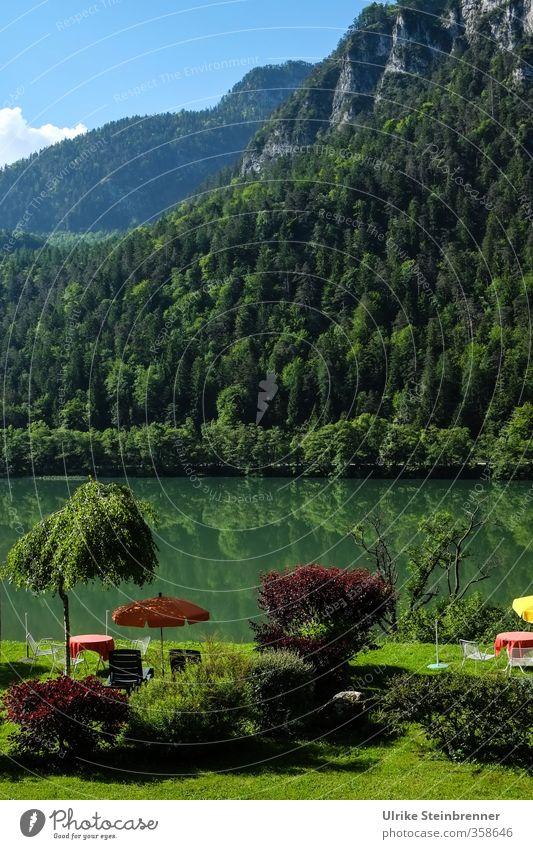 400 / Pause / AST 6 Inntal Natur Ferien & Urlaub & Reisen grün Baum Erholung Einsamkeit Landschaft ruhig Wald Berge u. Gebirge Gras Schwimmen & Baden See