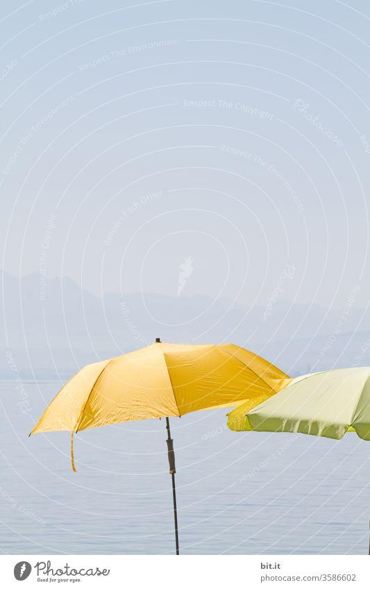 Schirme für die Gelbfüßler, am schwäbischen Meer. Sonne Sommer Sommerurlaub sommerlich Sonnenschirm sonnenschutz UV-Strahlung gelb grün blau Blauer Himmel