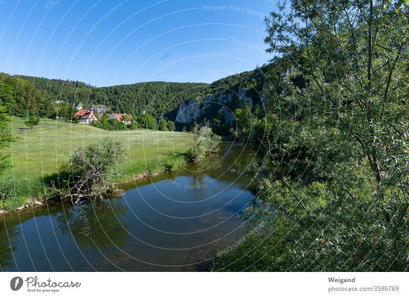 Oberes Donautal Fluss Idylle Baden-Württemberg Sommer Urlaub Heimat Ferien Ferien & Urlaub & Reisen Sehenswürdigkeit Landschaft Panorama Felsen