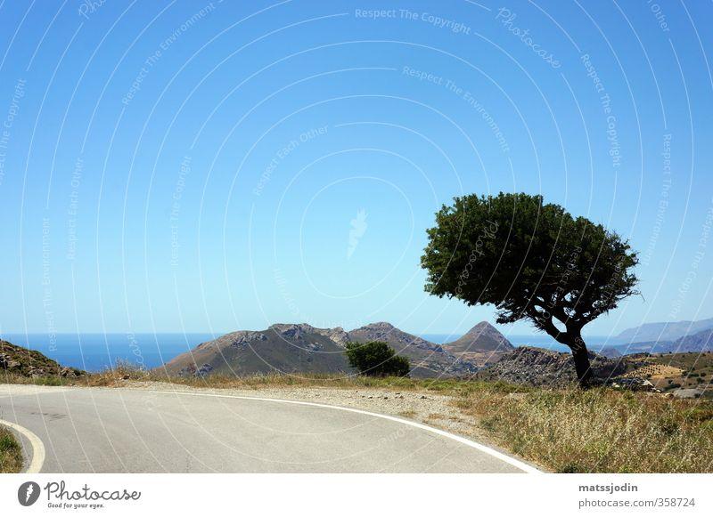 Himmel Natur blau Baum Horizont braun Schönes Wetter Hügel türkis Wolkenloser Himmel