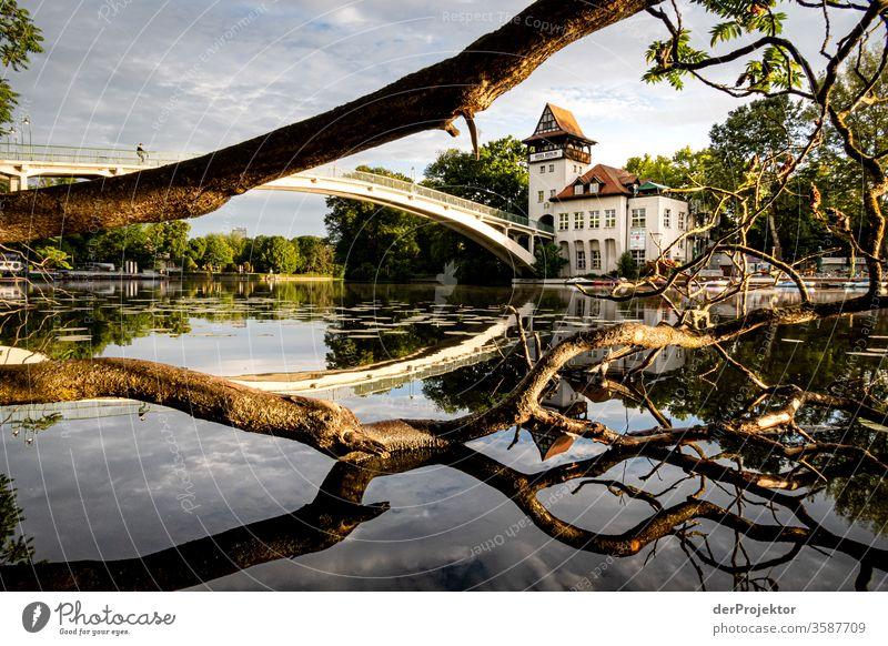 Insel der Jugend mit Brücke zum Sonnenaufgang Natur Morgendämmerung Treptow Treptower Park Leidenschaft insel der jugend Anlegestelle Reflexion & Spiegelung