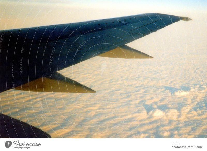Wolkenblick Tragfläche Flugzeug Licht fliegen Sonne hoch oben