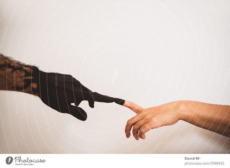 übertragung ansteckung ansteckungsgefahr Krankheit Pest Gesundheit Gesundheitswesen hand hände finger schwarz weiß haut Kontakt hautkontakt Infektionsgefahr
