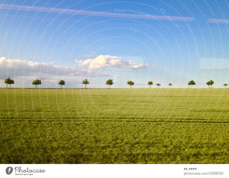 Landschaft aus dem Zug Bäume Feld Acker Fenster fahren Himmel Wolken schnell Spiegelung Natur Landwirtschaft Menschenleer Farbfoto Eisenbahn Bahn Wetter Allee