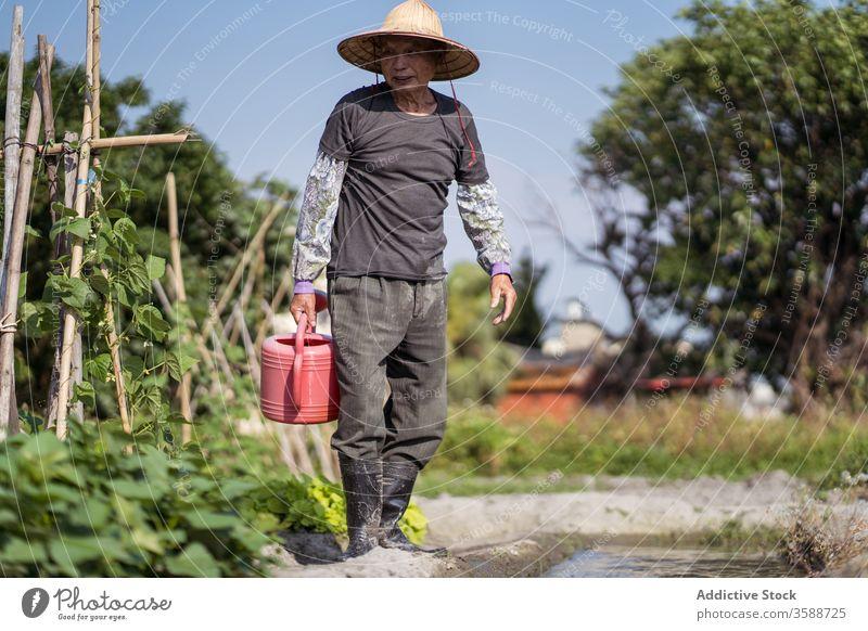 Ethnischer Bauer mittleren Alters füllt rote Gießkanne mit Bachwasser, während er an heißen Tagen im Garten arbeitet Mann Bauernhof Pflanze Landwirt besetzen