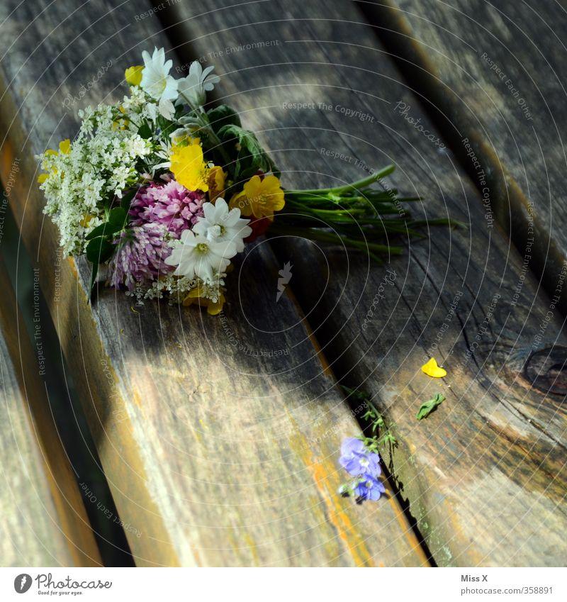Sommergruß Blume Liebe Gefühle Frühling Holz Blüte Stimmung Hochzeit Romantik Blühend Verliebtheit Blumenstrauß Duft Valentinstag Muttertag