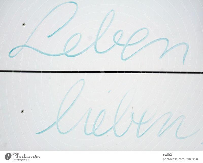 Mitteilung Schild Buchstaben Worte Leben lieben hingemalt Schreibschrift spontan positiv ermuntern Filzstift Schriftzeichen Farbfoto Hinweisschild blau