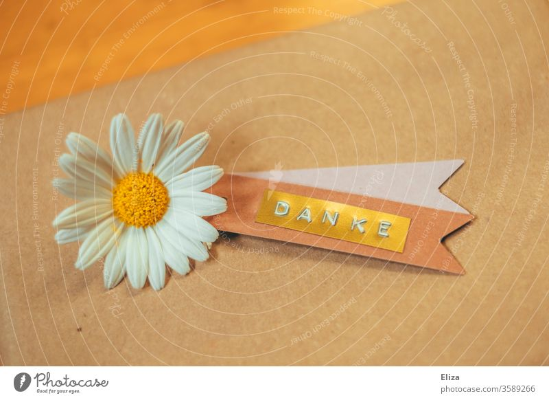 Ein Etikett auf dem das Wort Danke geschrieben steht mit einer Margeriten Blüte auf braunen Packpapier. Dankbarkeit. Blume dankbar Muttertag Geschenk bedanken