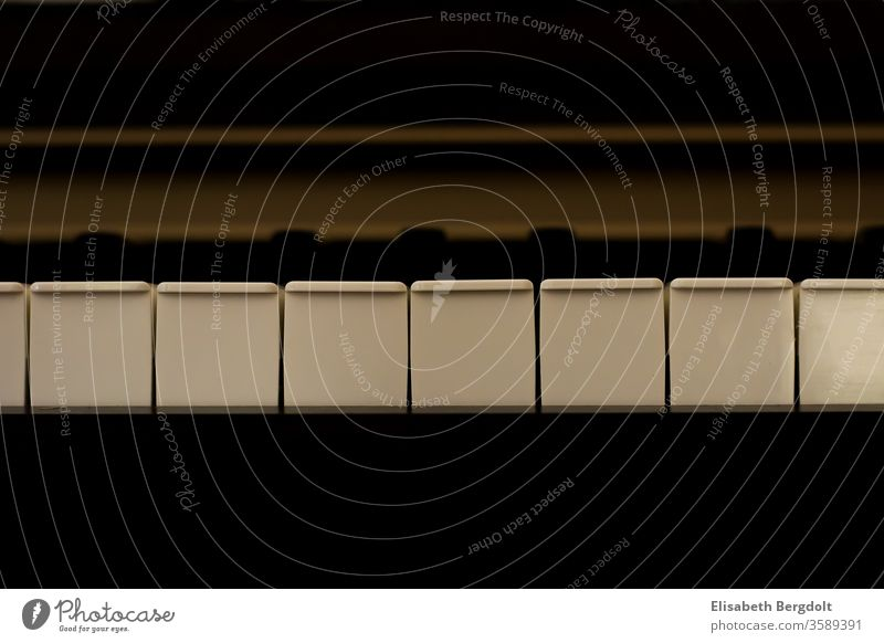 Piano Klaviatur Klavier Klaviertasten Tasten Musik musizieren