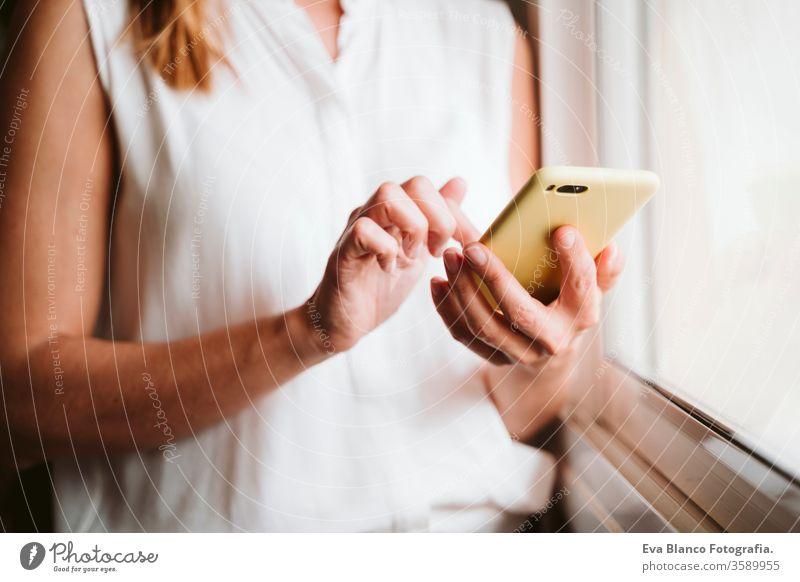 nicht erkennbare junge Frau zu Hause, die ein Mobiltelefon am Fenster benutzt Handy heimwärts Technik & Technologie tagsüber Büro Arbeitswohnung Business