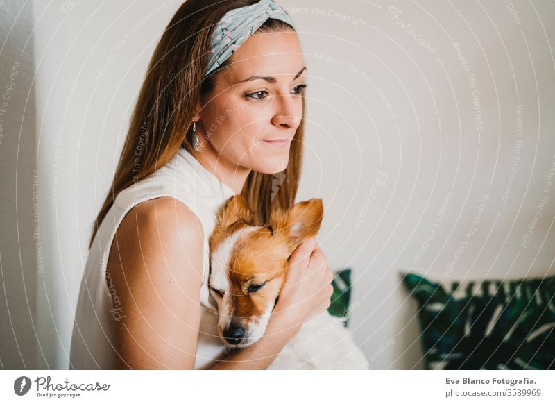 junge Frau, die zu Hause arbeitet und kuschelt Süßer kleiner Hund. Konzept für zu Hause bleiben kuscheln Liebe Kuscheln heimwärts Handy arbeiten