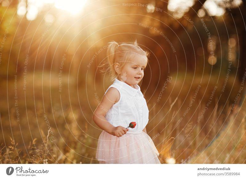 Das Mädchen geht bei Sonnenuntergang im Park spazieren. nettes kleines Baby im rosa Rock wenig Kind Porträt Frühling Sommer ernst niedlich traurig schön