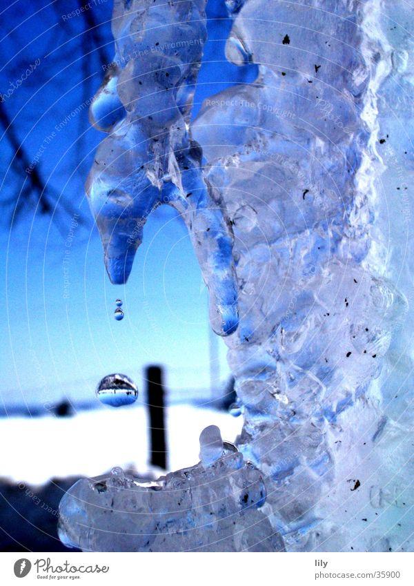 eisige Träne Wasser blau Winter Eis Wassertropfen Eiszapfen