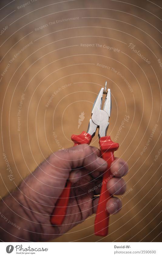 einen Nagel mit der Zange gezogen / Nagelzange Hand Werkzeug Handwerker Heimwerker Farbfoto Arbeit & Erwerbstätigkeit Innenaufnahme Baustelle Tag Nahaufnahme