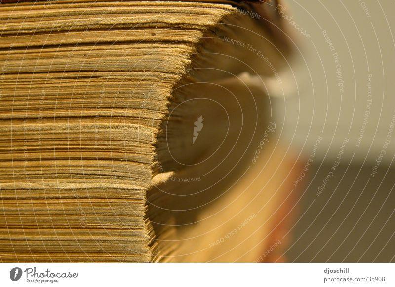 DAS_BLATTWERK_SEITEN_ANSICHT_ Buch Blatt Papier historisch Seite Lexicon Verbindung